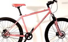 raffle1-wholebike.jpg